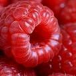 Spruce Ridge Farm - Raspberries