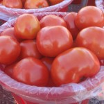 Spruce Ridge Farm - Tomatoes