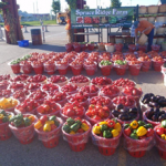 Spruce Ridge Farm - Tomatoes and peppers at market